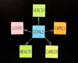 goal setting categories